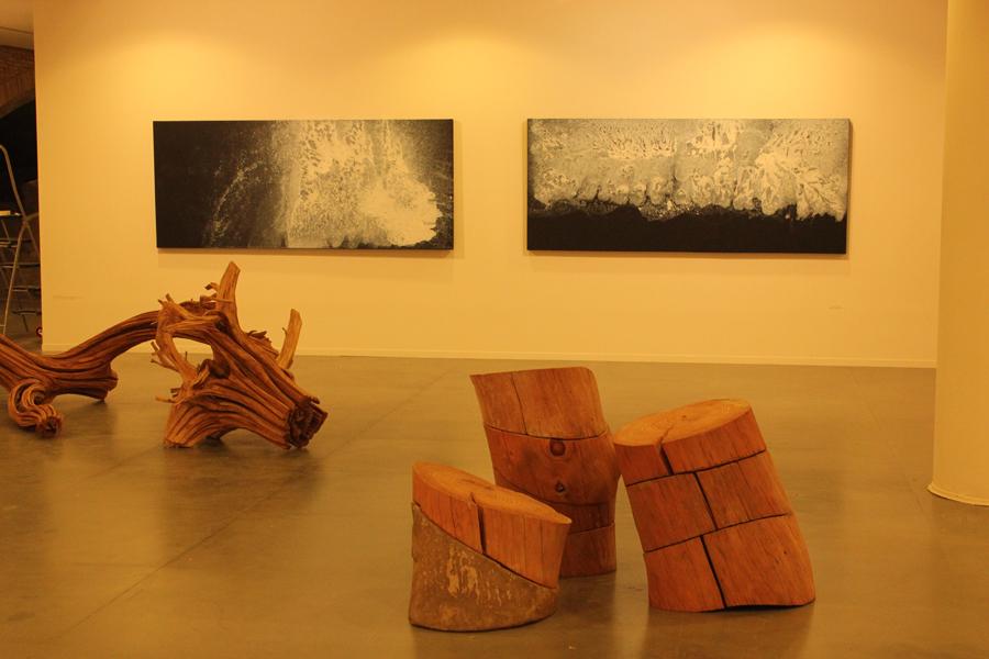 20 años Arte & Naturaleza Huesca. Vista parcial | Mina Marx